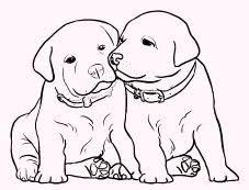 I Cuccioli Da Colorare E Disegnare Di Rachael Hale