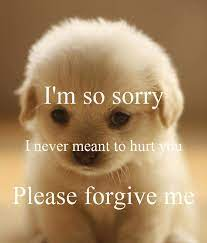 i m so sorry i never meant to hurt you