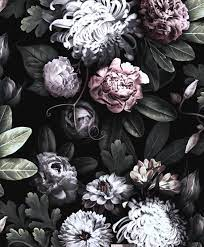 Black Floral Wallpapers - Top Free ...