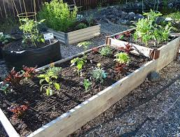 medium garden bed drip irrigation kit