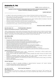 Sample Resume For Business Analyst Amazing Sample Ba Resumes Business Analyst Resume Format Sample Business