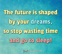 Quotes On Sleep And Dreams Best Of The Future Is Shaped By Your Dreams So Stop Wasting Time And Go To