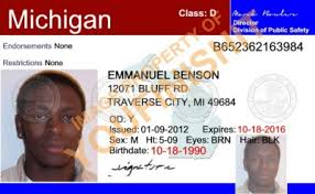 Michigan Michigan Id Od Card Id