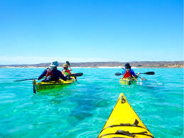 sea kayak ningaloo sea kayak kayak snorkel eco tour guided tour