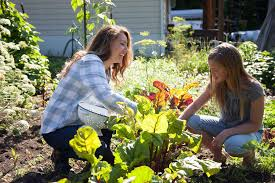grow a large scale garden livestock