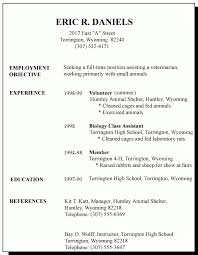 Resume Examples For First Job