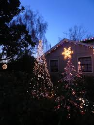 String Light Outdoor Christmas Tree Outdoor String Of Lights Tree For The Holidays 9 Steps