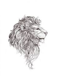 Image result for tattoo designs for lion and lioness   for Us likewise 71 best Art  Lions and Tigers images on Pinterest   Big cats together with Matching lion tattoos of lion and lioness on both of thighs additionally 30 best Sexy Leo Tattoos With Crown images on Pinterest   Leo together with  further Attractive Thigh Tattoos That Send Across a Powerful Message furthermore  additionally 159 best Lion Tattoos images on Pinterest   Tattoo ideas  Lion furthermore  furthermore 101 Lion   Lioness Tattoo Ideas   Designs   AuthorityTattoo moreover . on dandy lion tattoo design