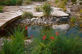 Small Picture A Naturalistic Pond in Your Garden David Andersen