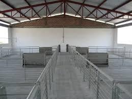 Factores Que Deben Tomarse En Cuenta Al Planear La Construcción De Precio Granja De Cerdos Engorde