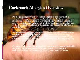 cockroach allergy - Ukran.agdiffusion.com