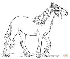 Gypsy Vanner coloring page | Free Printable Coloring Pages