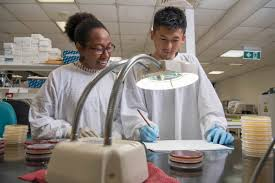 Integrity, quality and ethics - Research and Innovation | Charles Darwin  University