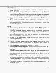 Business Analyst Resume Templates Samples Fresh Essay Structure
