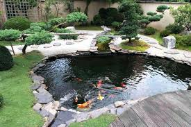 pond ideas for small yards landscaping around a natural above ground fish designs backyard kits p