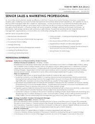 ... Marketing Professional Resume. TODD W. SMITH, B.A. (Econ.