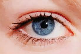 iridology and sclerology