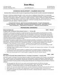 Profit Executive Resume Sevte