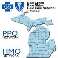 Opm has determined that blue care network of michigan prescription drug coverage is, on average, expected to pay out as much as the standard medicare prescription drug coverage will pay for all plan. Health Insurance Companies In Metro Detroit Phenix Employee Benefits