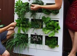 Small Picture 5 Innovative Indoor Garden Designs Organic Authority