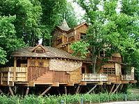 Best 25 Alnwick Treehouse Ideas On Pinterest  Tree Houses The Treehouse Alnwick
