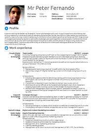 Resume Examples By Real People Google Team Leader Resume Sample