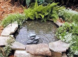 create a mini garden pond in the mortar