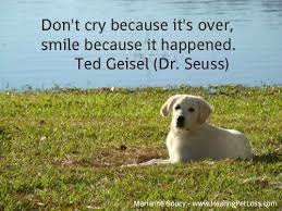 Dog Passing Quotes Mesmerizing Pet Loss Sayings Loss Of A Pet Quotes Loss Of A Pet Quotes Image