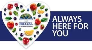 Výsledek obrázku pro fructal logo
