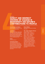 (PDF) <b>Chapter 4</b> - Direct and indirect drivers of change in ...