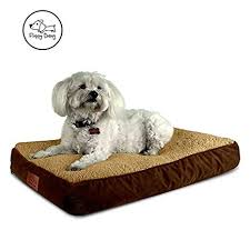 dog bed with removable cover. Fine With Floppy Dawg Medium Dog Bed With Removable Cover And Waterproof Liner   Perfectly Stuffed To 4 For With