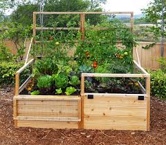 3 x6 convertible raised garden bed with removable greenhouse panels