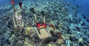 Best Snorkeling Fins In 2020 A Definitive Guide Comparison
