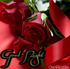 Good Night Roses posted by Christopher ...