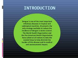 dengue feber essay
