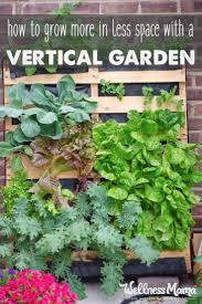 Walled Kitchen Gardens 17 Best Ideas About Walled Garden On Pinterest Garden Privacy