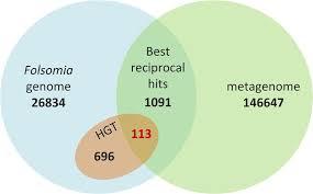 Best Venn Diagram Ever Venn Diagram Showing Overlap Best Reciprocal Blast Hits