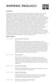 Vice President Operations Resume Samples Visualcv Resume Samples