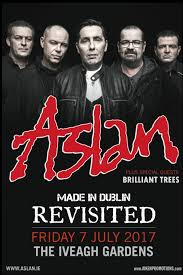 colm williamson interview features interview hot press brilliant trees to support aslan at iveagh gardens gig