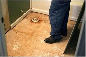 how to remove old vinyl tile vinyl floor adhesive remover adhesive remover chic and creative vinyl