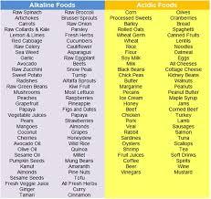 45 Simple Ways To Menu Diet Alkaline