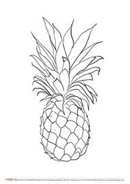 pineapple clipart black and white. #free #printable coloring pages for toddlers and preschoolers: #pineapple. click through pineapple clipart black white h