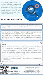Nice Sap Pi Resume Pattern Documentation Template Example Ideas