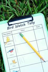 159 Best Florida Birds Images On Pinterest  Florida Beautiful Backyard Bird Watch