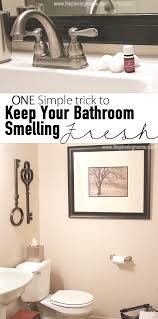 Bathroom Air Freshener Inspiration One Quick Trick To Keep Your Bathroom Smelling Fresh The Pinning Mama
