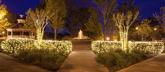 stake these tree sets into the ground or in pots along the walkway to create a lighted path for guests or a stunning garden of light led lights