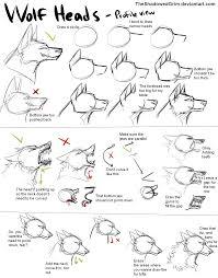 Pin by laura sawicka on draw kylie pinterest wolf deviantart rh pinterest timber wolf diagram
