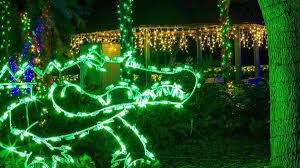 Miami Christmas Lights Tour Zoo Lights At Zoo Miami Holiday Lights Miami On The Cheap