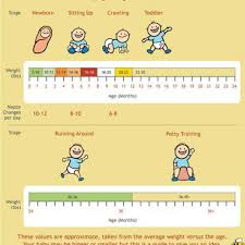 6 Month Old Weight Chart 24 Baby Weight Charts Template Lab