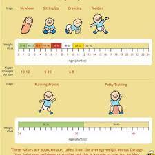 free baby weight chart 01